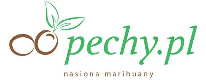 pechy.pl, pechy.pl opinie