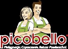 picobello-shop.pl, picobello-shop.pl opinie